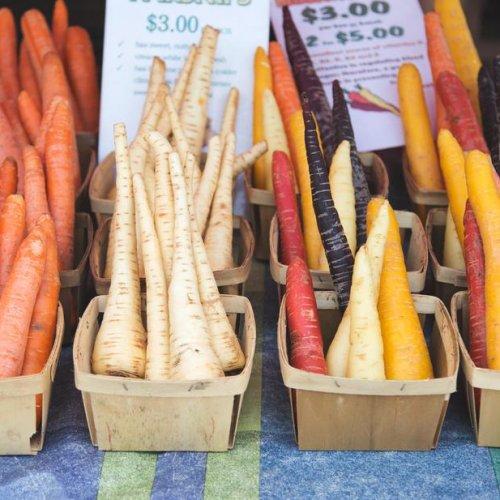 circuit court fruits et légumes