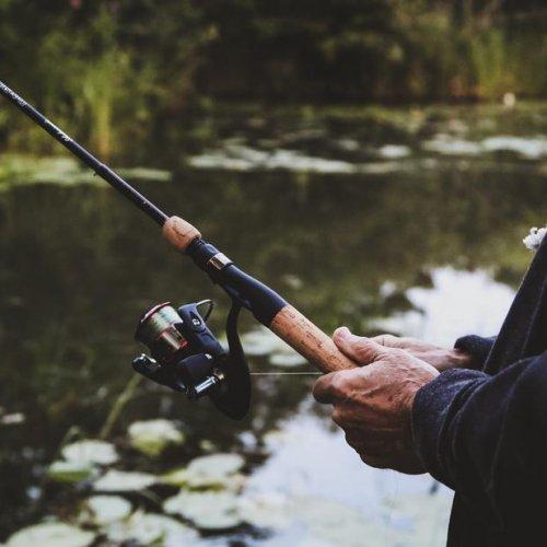 poisson peche responsable